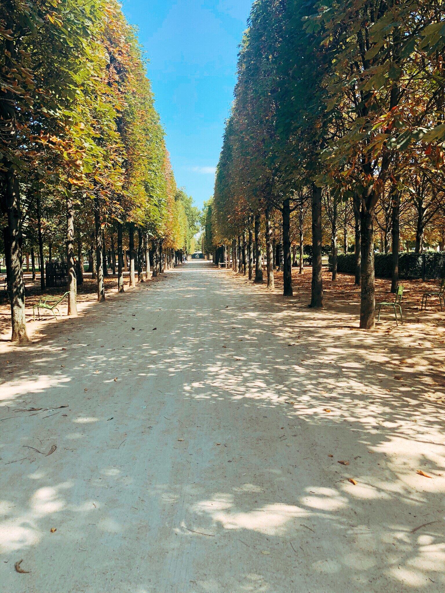 Parisblogpart3#3.JPG