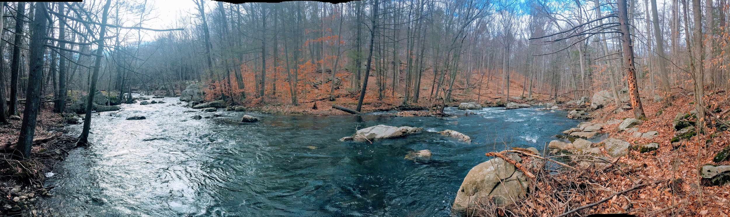 A nice panoramic of the creek along the 77/79 trail heading west.