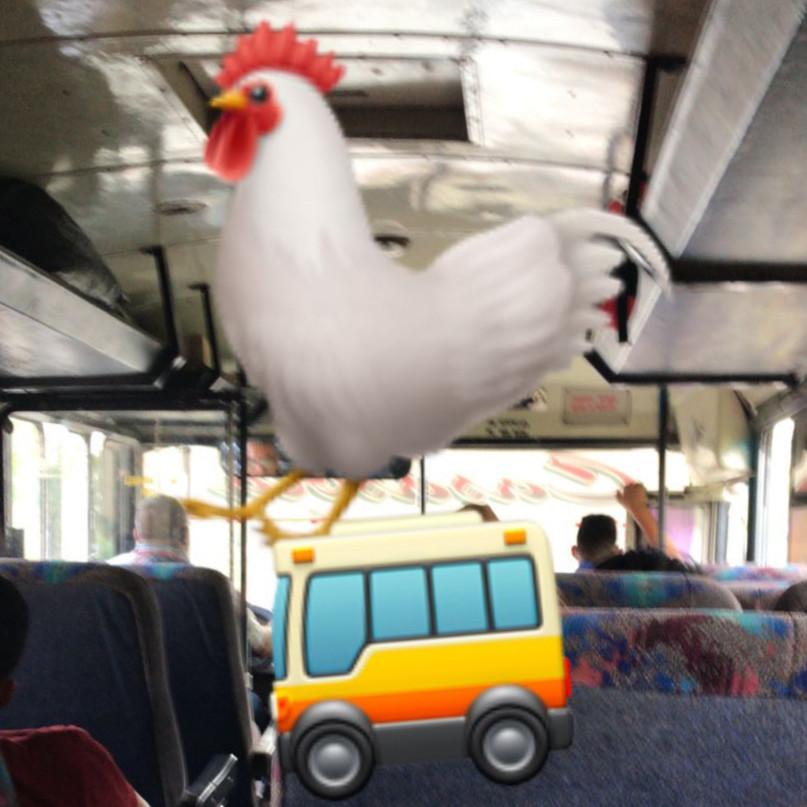 chicken buss honduras AWOL .JPG