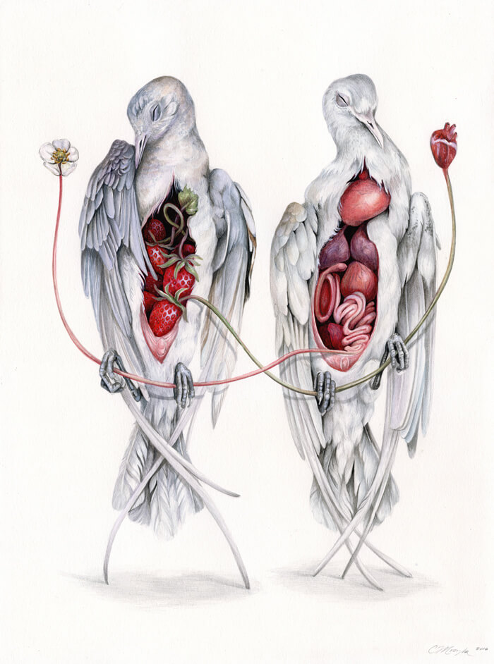 A painting of two birds next to each other. Each have had their chests cut open, one has its heart removed the other a flower, both are still connected to their bodies but held by the other. It's a bit creepy but not as gruesome as this sounds.