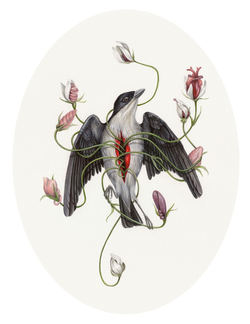 A painting of a bird with its chest cut open and coming out are long vines with flowers