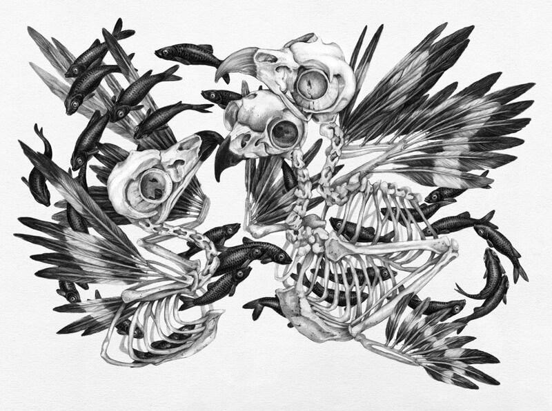 Owl-Skulls_F.jpg