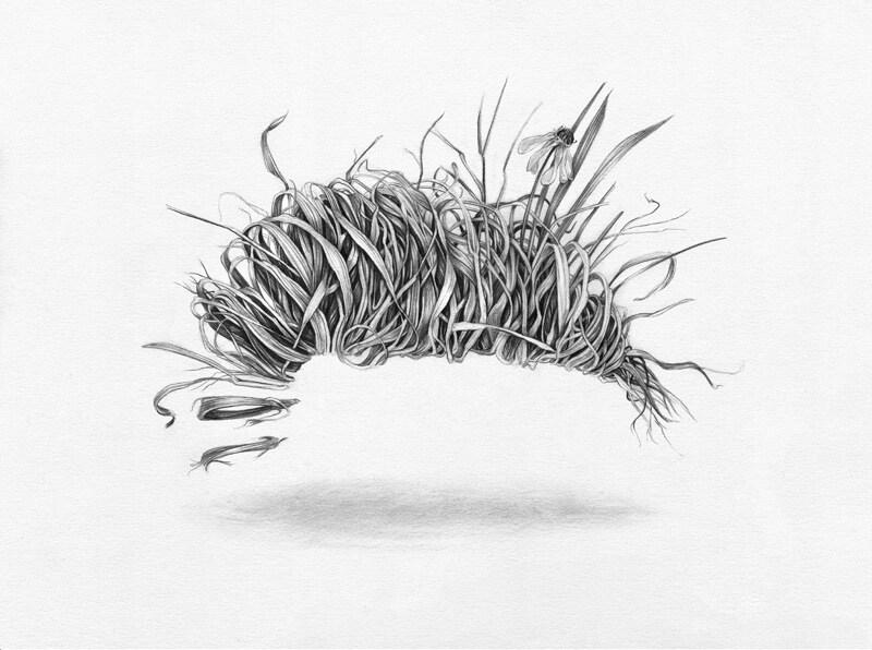 Grass-Burrito-300.jpg