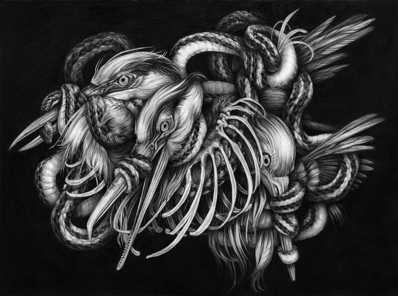heron-snake-300.jpg
