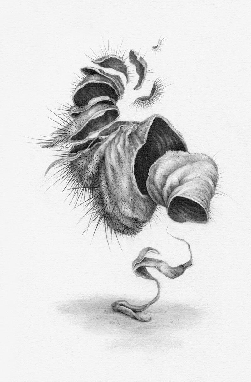 bodies - tumor copy.jpg