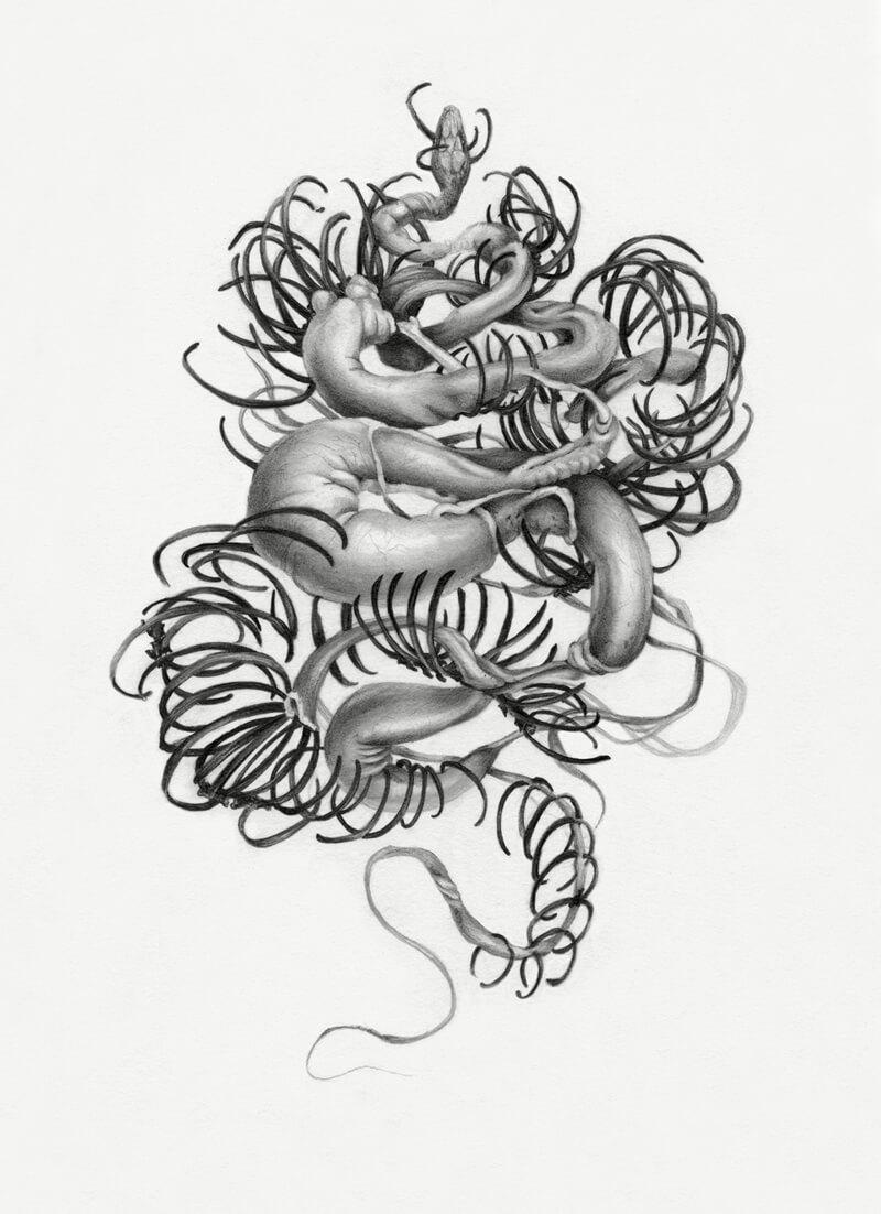 brittle christina mrozik drawing