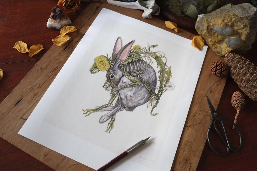 rabbit Print 1.JPG