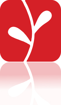 Verity Leaf (Reflect).jpg