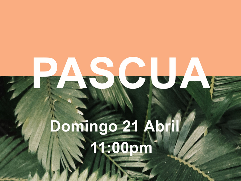 Pascua web 11am.jpg