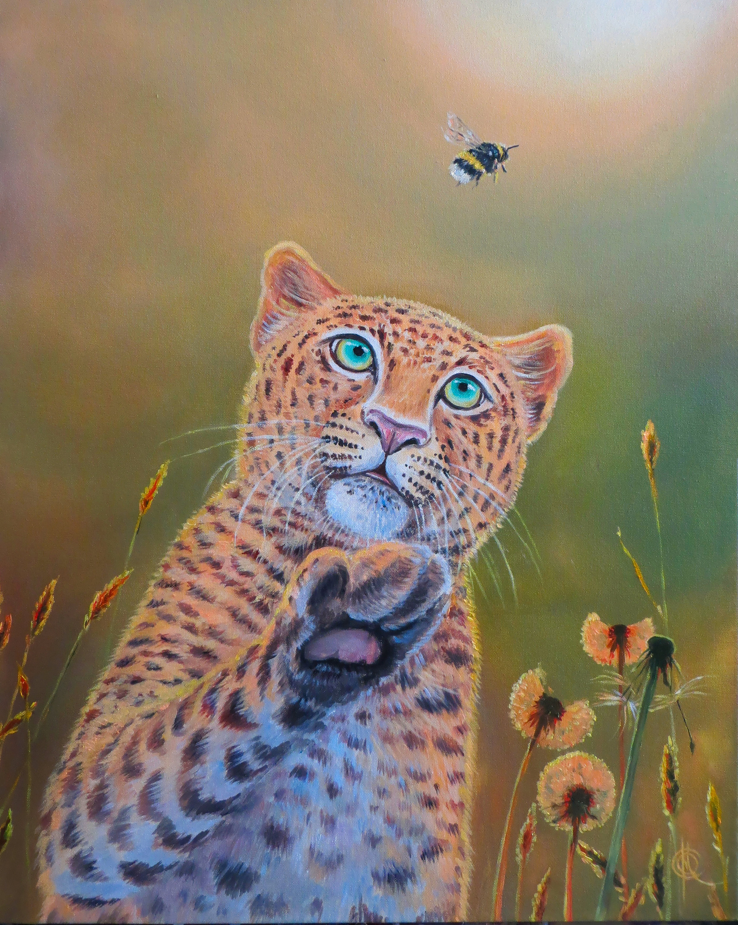 """Leopard and Bumblebee"""