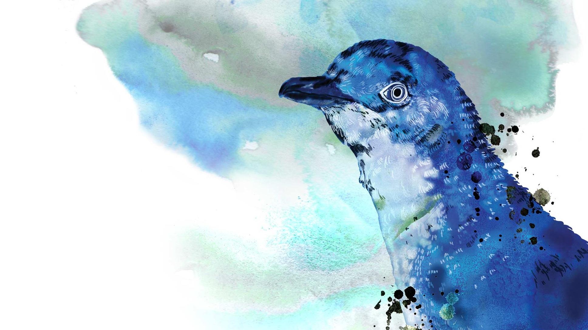 Homepage-Main-Image-2-Penguin.jpg