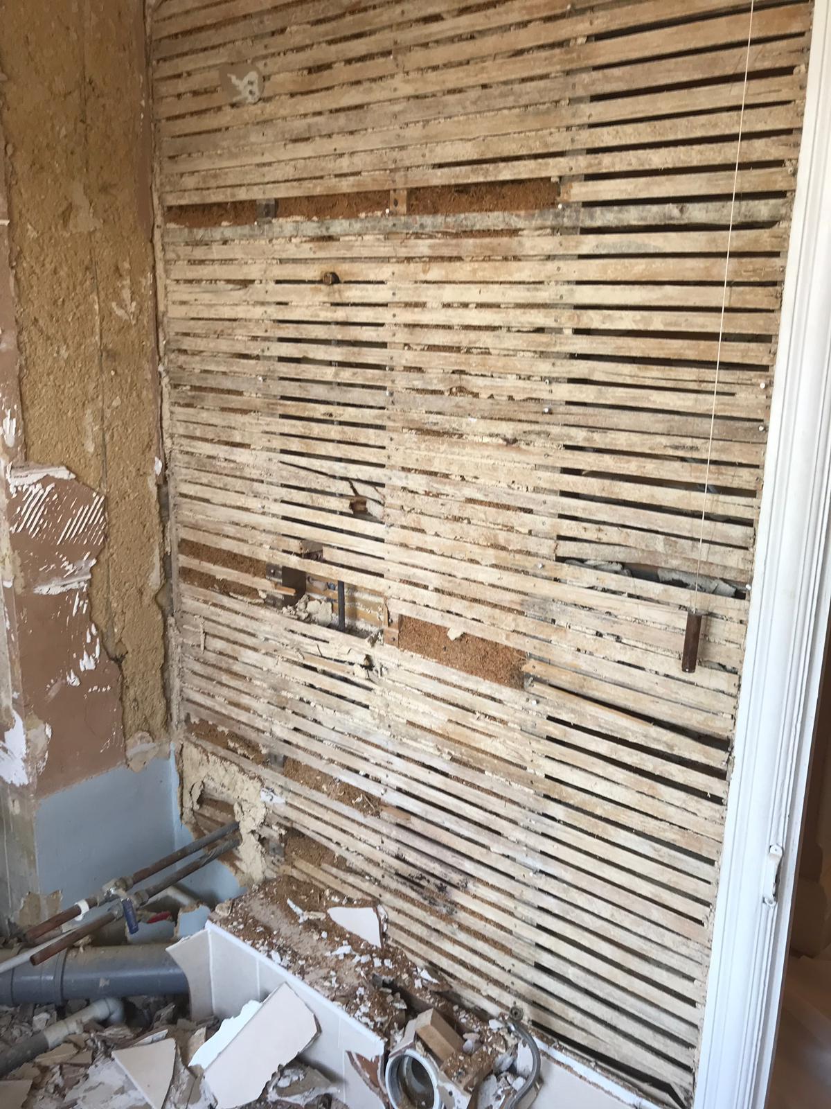 Warburton During Remove Wall.JPG