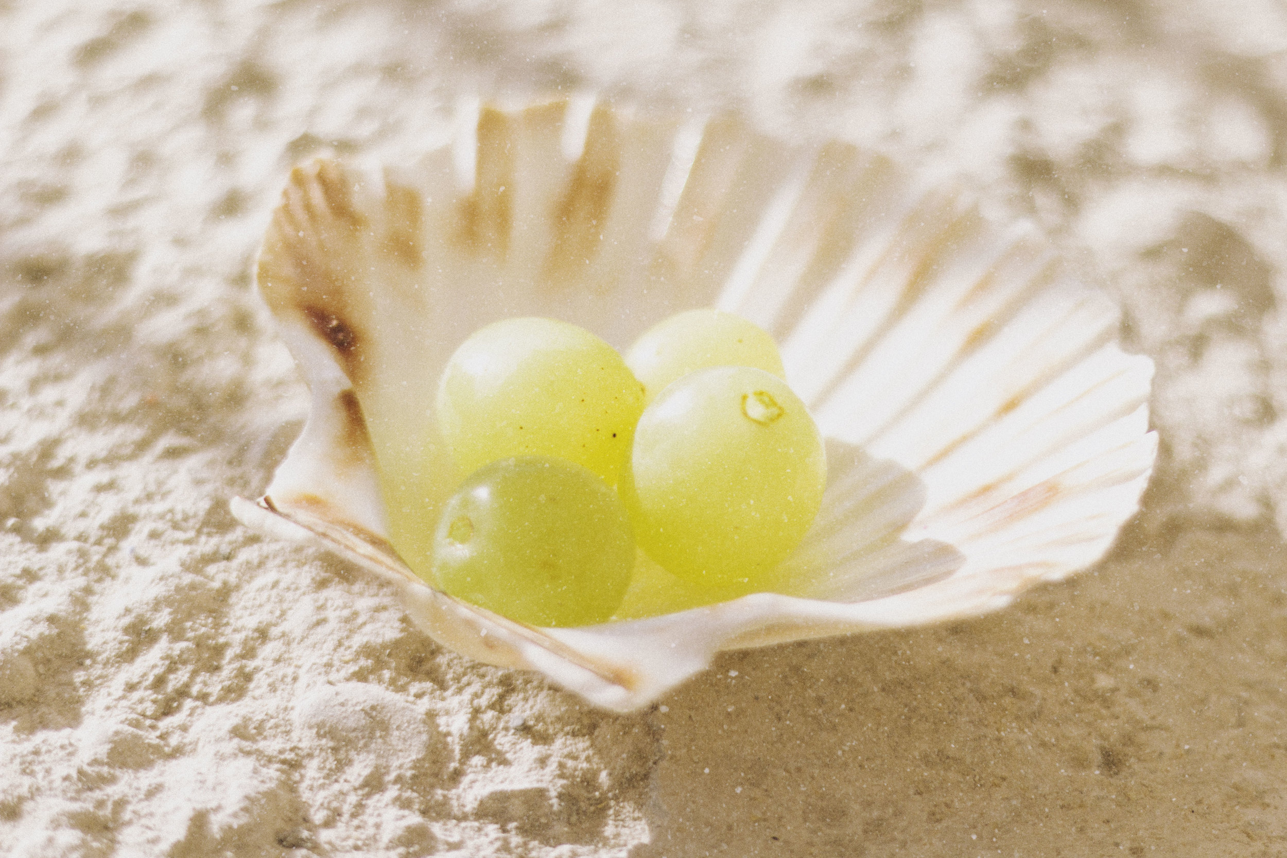 grapes_in_a_shell