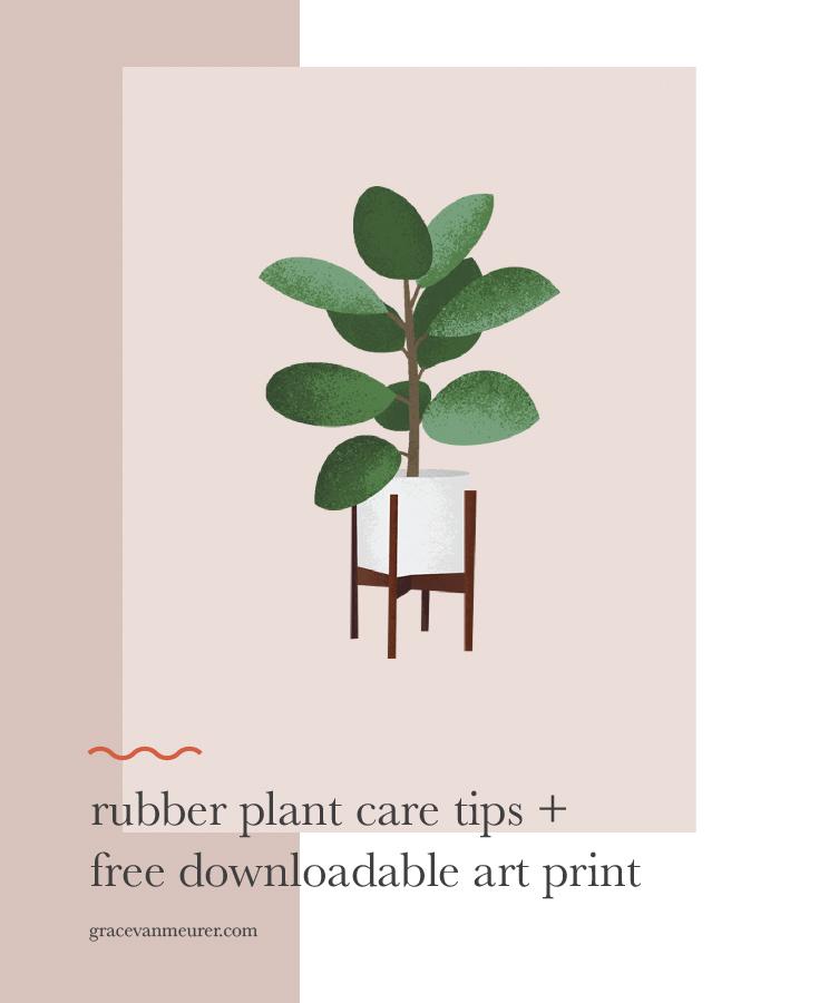 rubberplant_pin-01.jpg