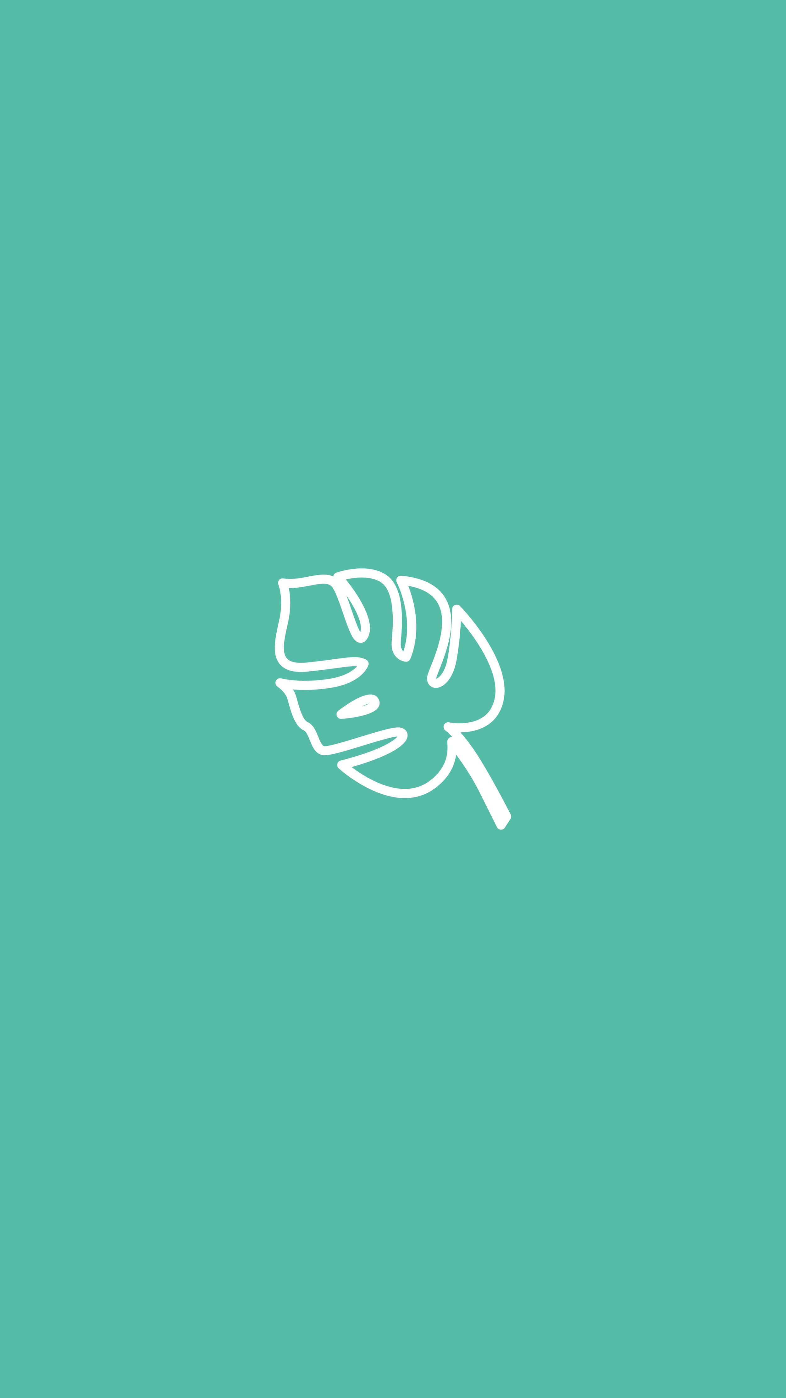 Monstera Leaf, Plant, House Plant