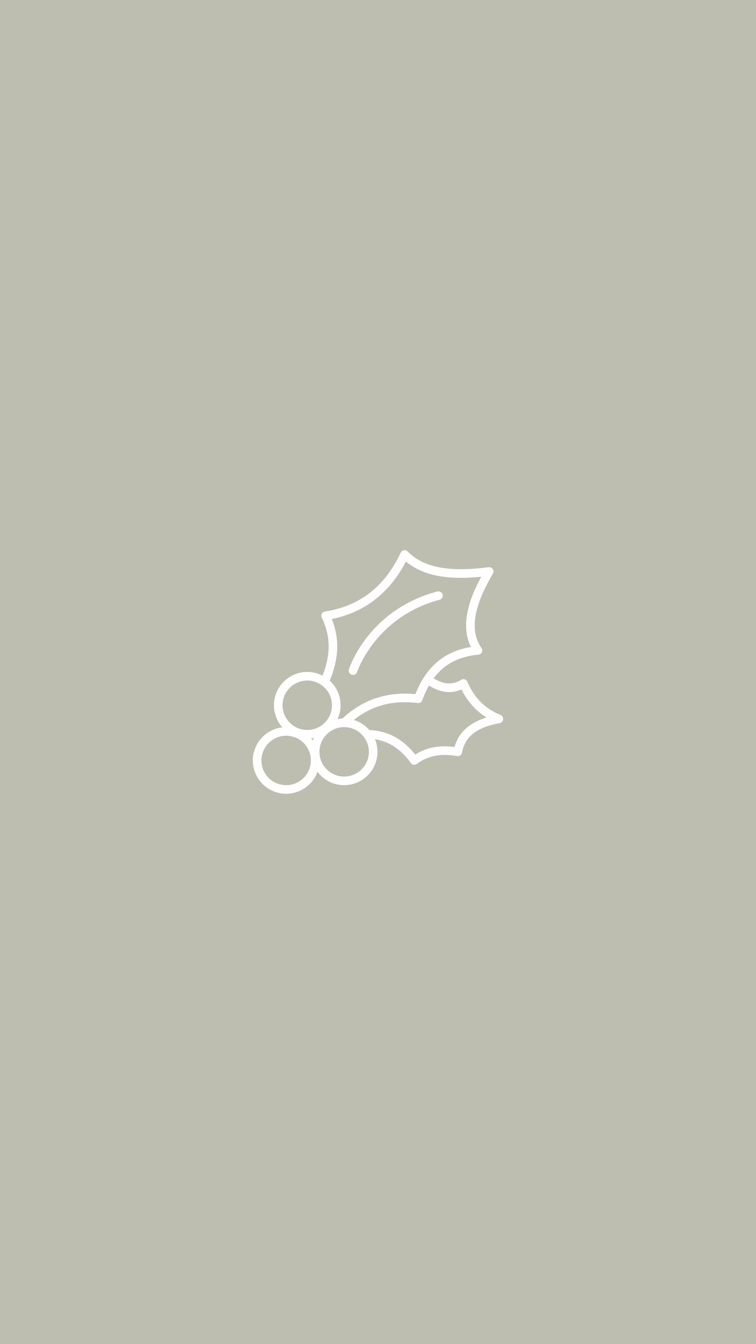 Christmas Wreath, Holly, Ivy
