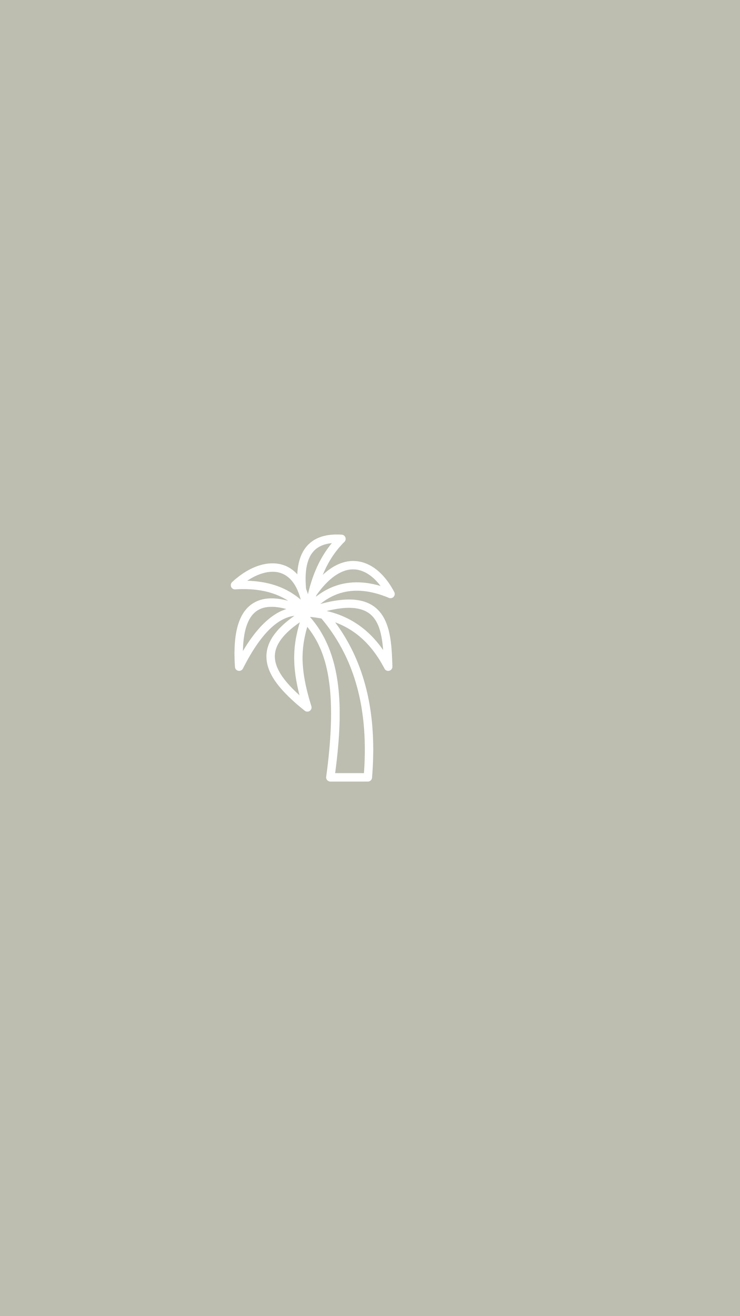 Palm Tree, Vacation, Beach