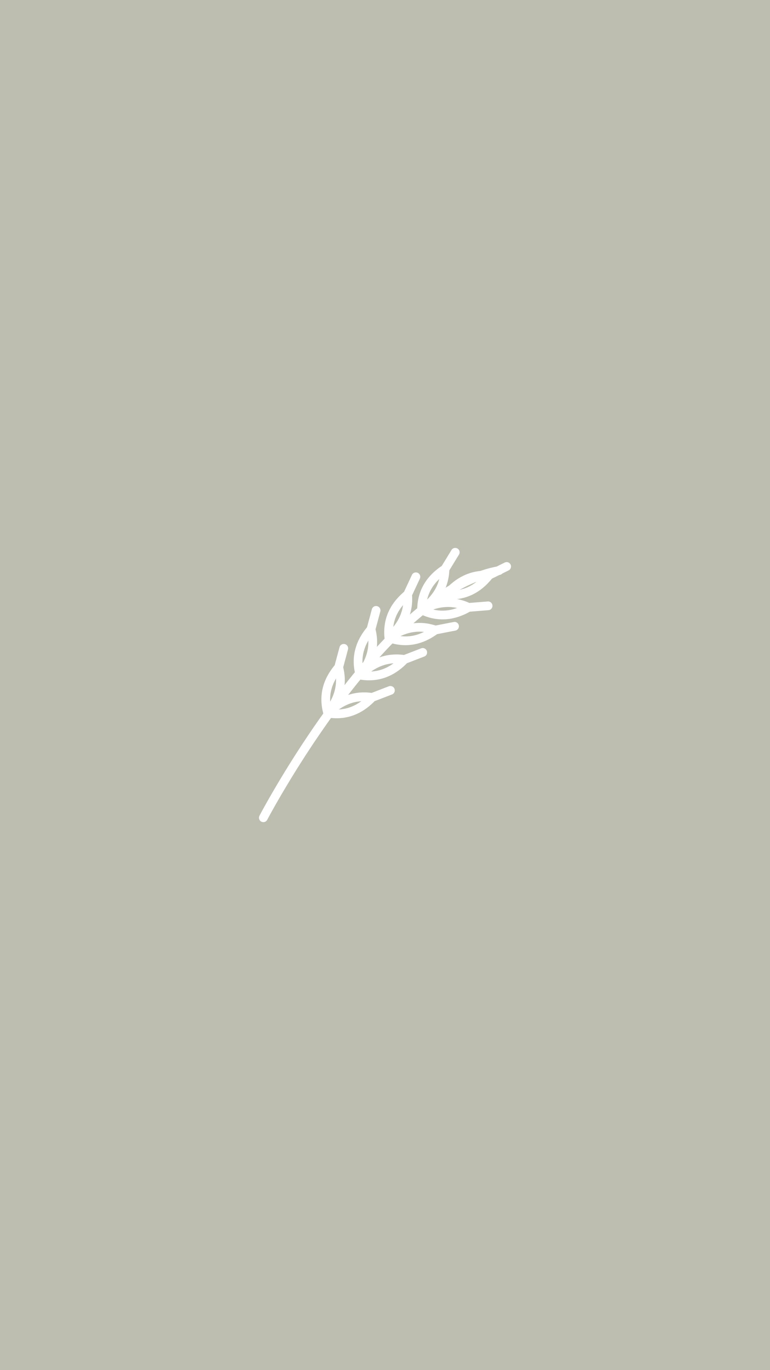 Pampas Grass, Fall Decor