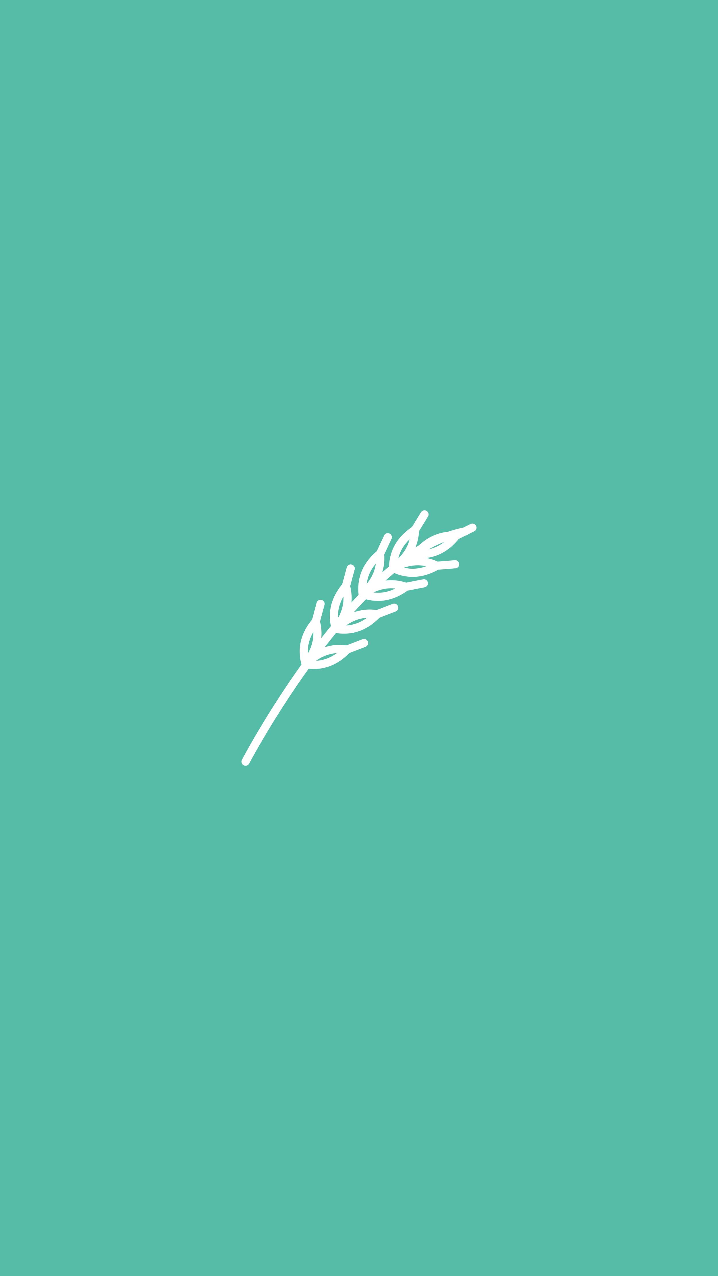 IG_Highlights_Pampas Grass.png