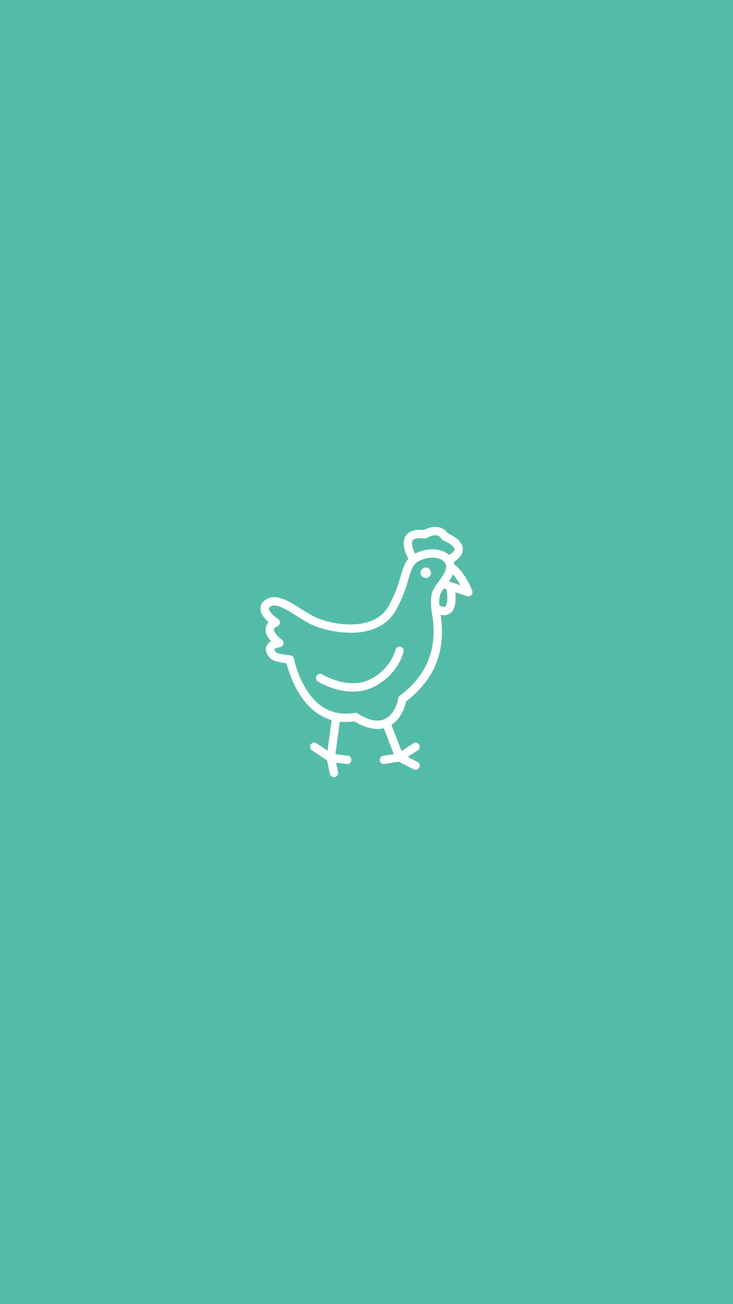 Chicken, Farm, Poultry