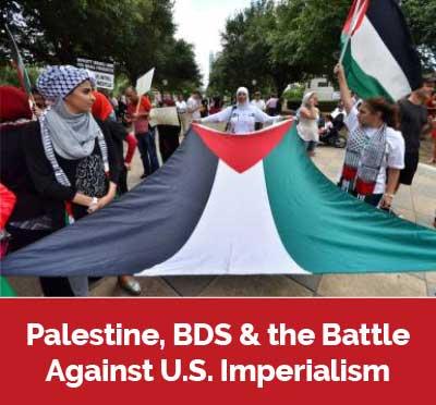 palestine-article3-flag.jpg