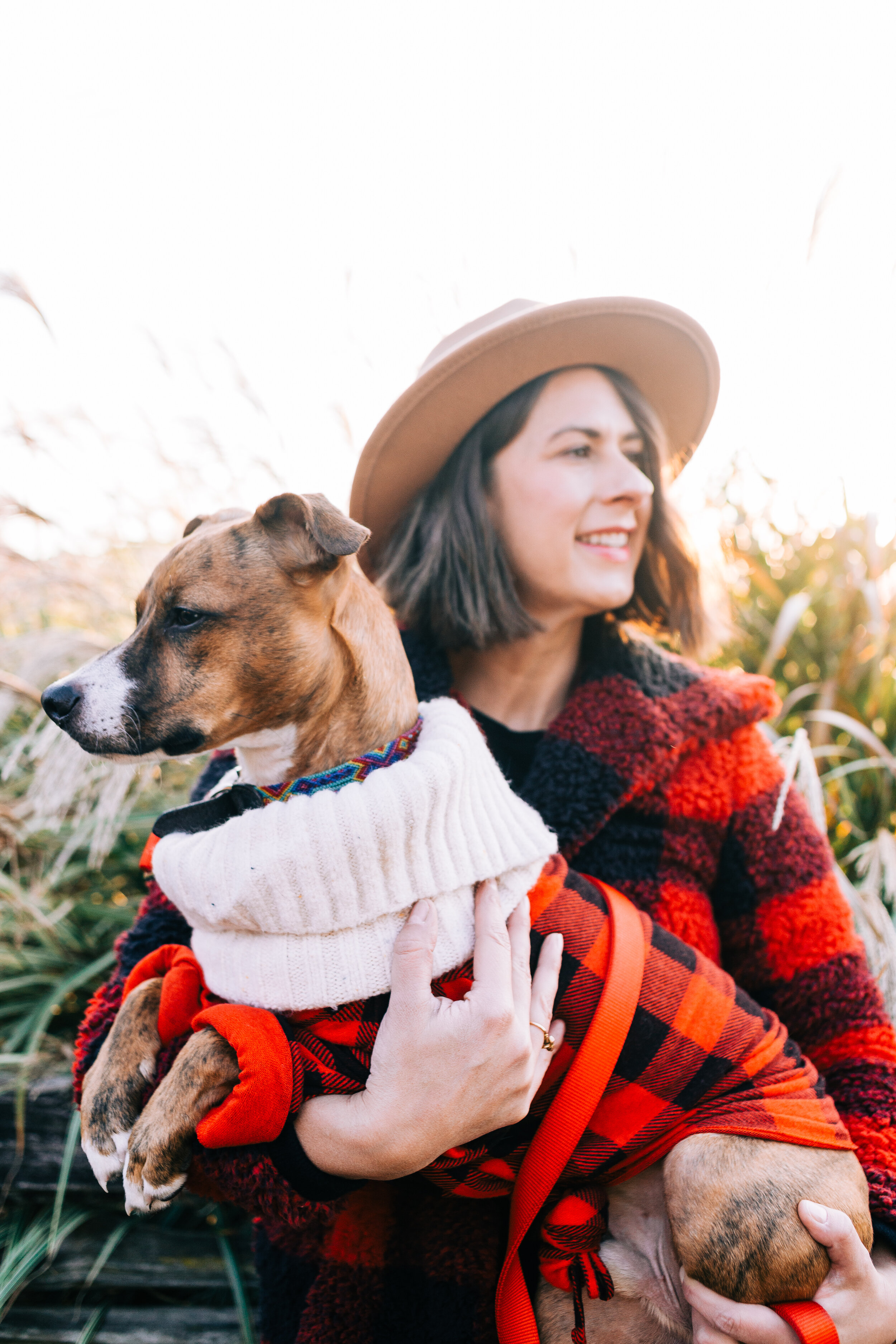 This is the Holiday photo shoot I recently had with my dog, Churro, for our Holiday card this year.