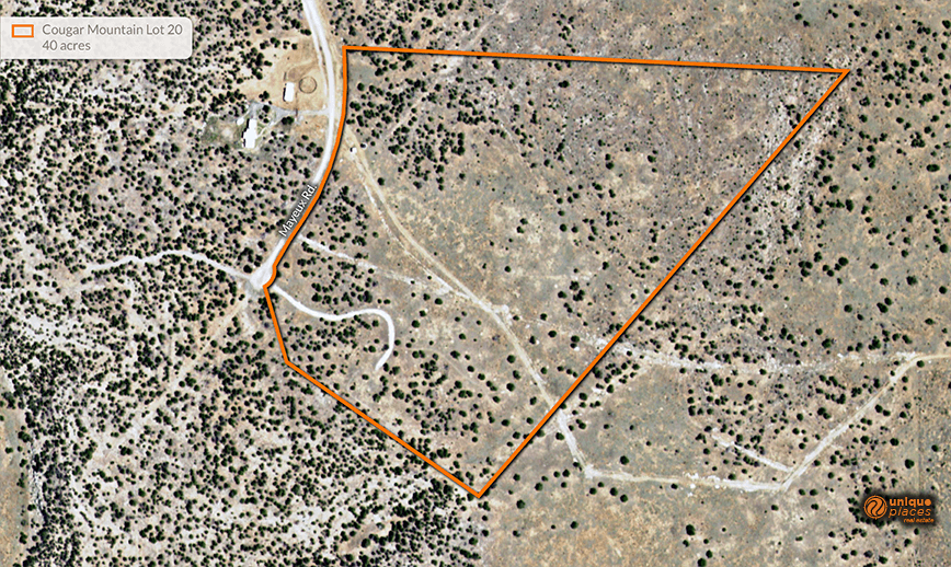 CougarMountain_Lot20_Aerial.png