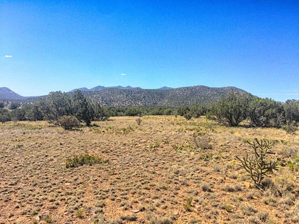 Mesa-Field3.png
