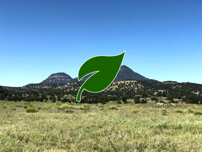 Alegres Mtn. East Ranch - $1,129,000