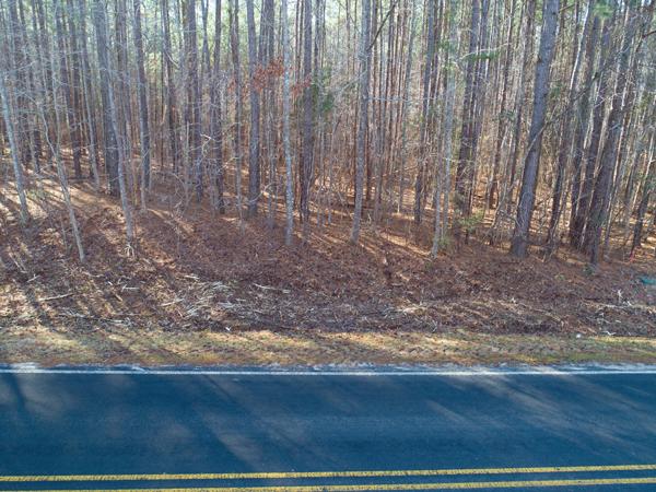 9504-Roadside-woods-low.png