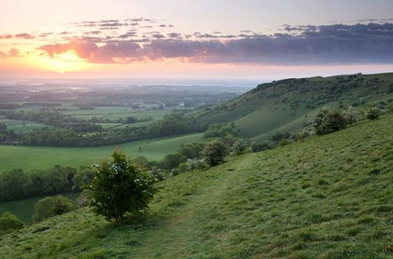 South Downs_1.jpg