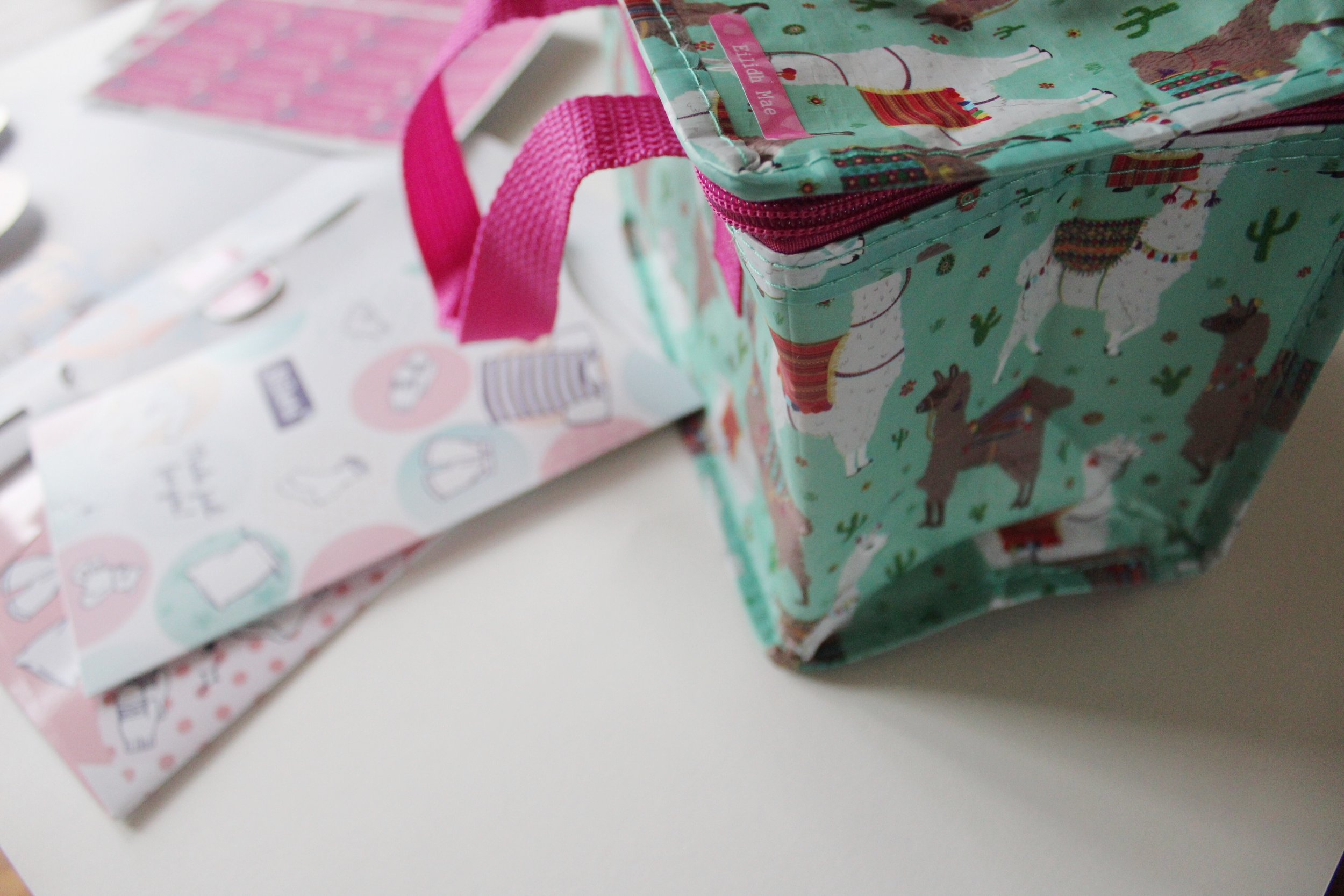 packed lunch bag by sass and belle.JPG