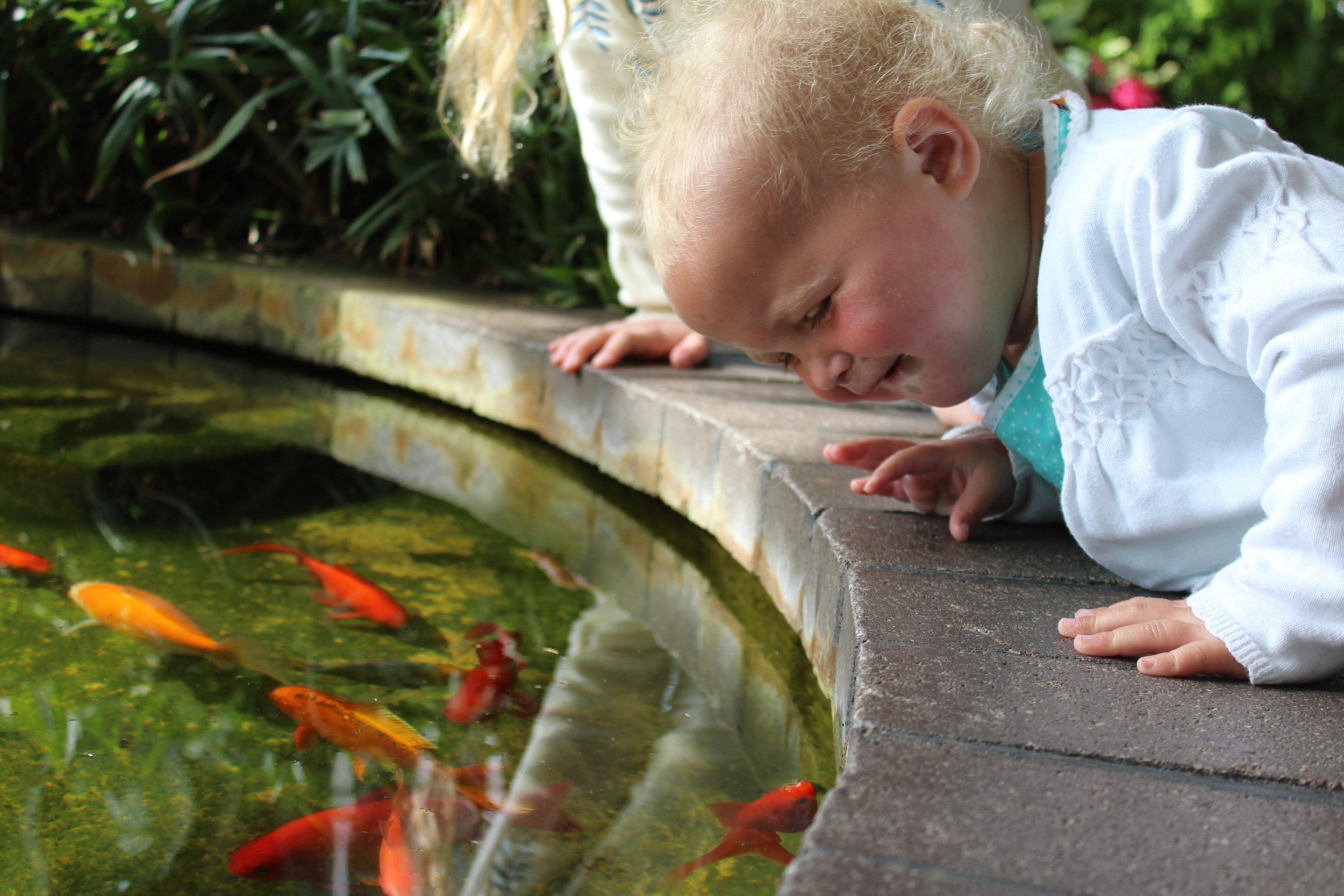 Matilda in Buxton Gardens.JPG