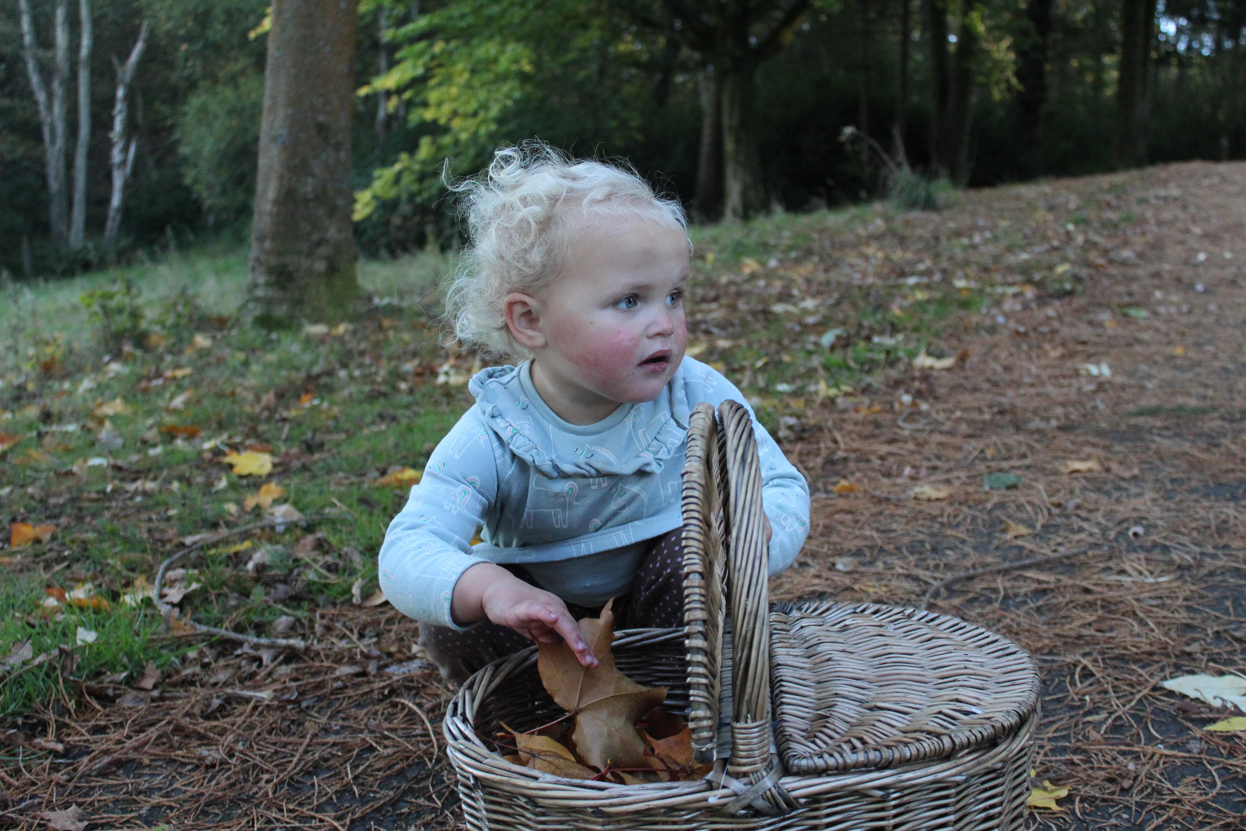matilda in autumn 2018 unedited.JPG