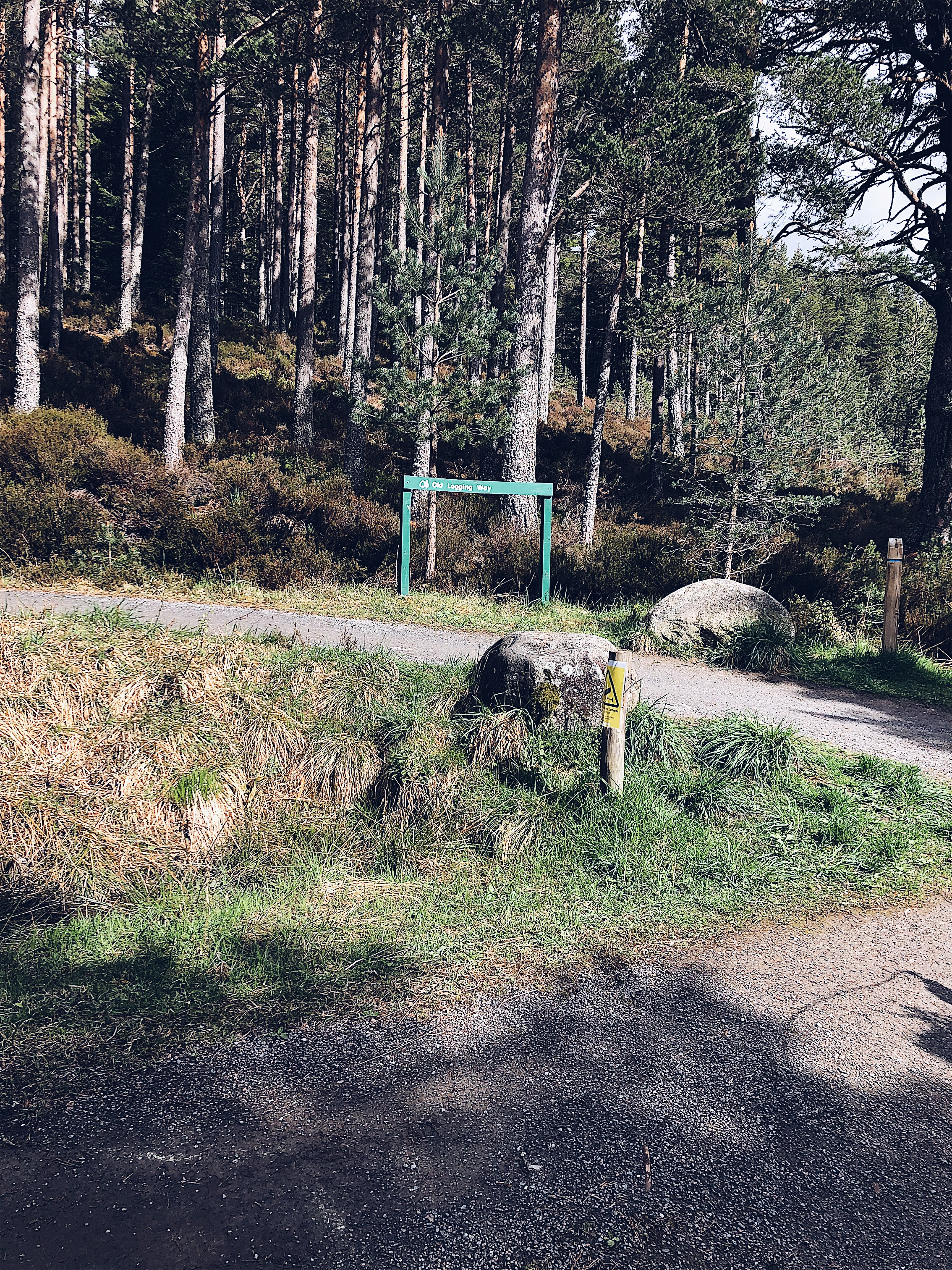 The Old Logging Way, route to the Green Loch, Aviemore