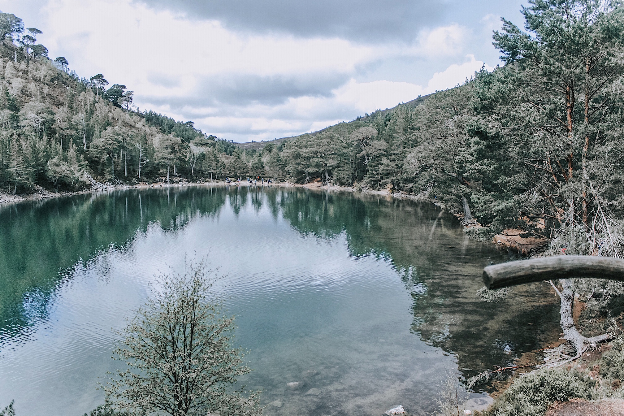 Across the loch from the view point. The Green Loch, Lochan Uaine.
