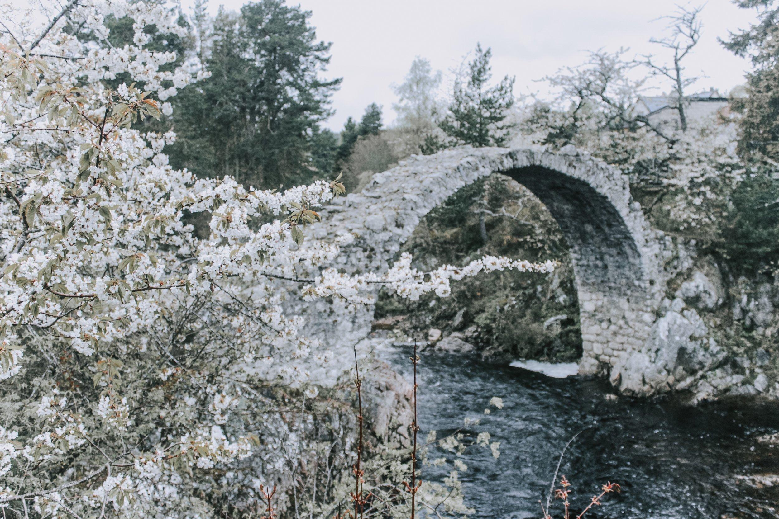 carrbridge bridge.jpg