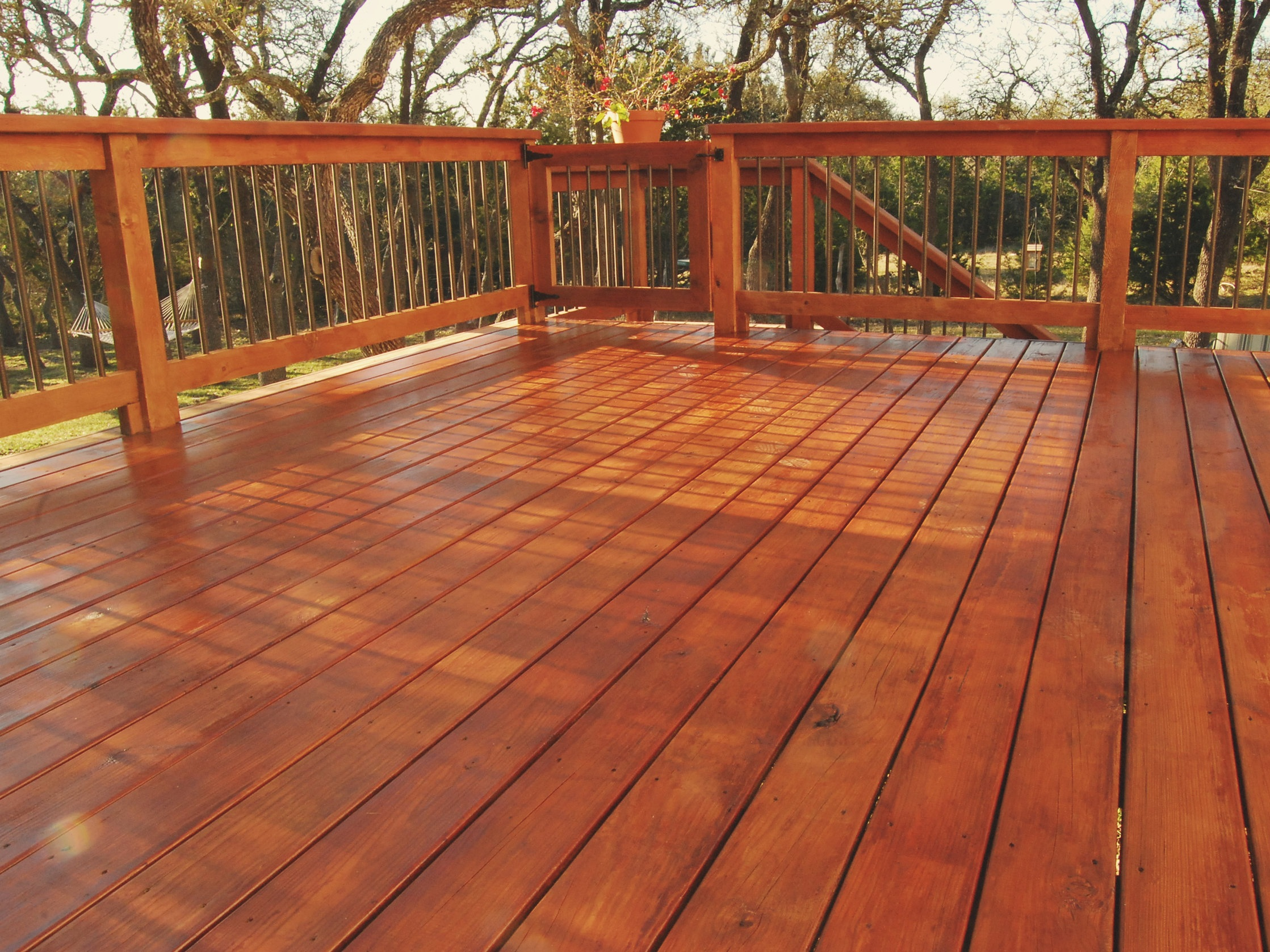 Deck Cleaning & Restoration in Charlottesville