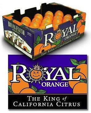 royal orange.JPG