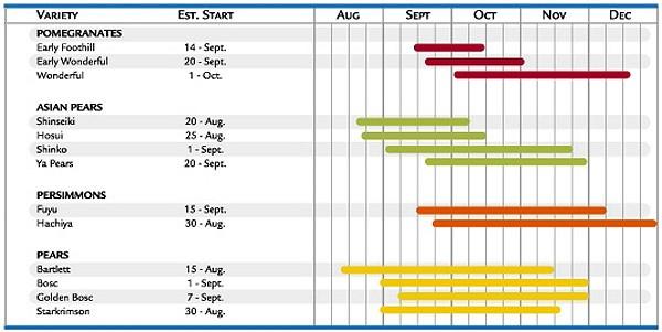 fall_items_chart1.jpg