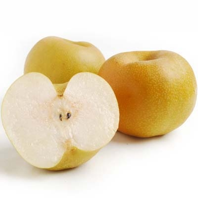 Asian Pears - Beginning in August with Hosui (brown) and Shinseiki (yellow) Asian pears, we pack in single layer and two layer tissue wrapped cartons. These