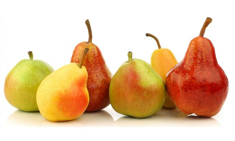 Pears - The beginning of Fall is marked by the debut of the Bartlett pear.Starting in the river bottom of Stockton in August, this old standard cannot be beat.As the season progresses, Bartletts move to the Northern California mountains, providing you with seamless availability.We also offer Starkrimson (reds), Golden Bosc, and European Bosc pears.Our pears can all be consolidated in one place to ship with your tree fruit needs.