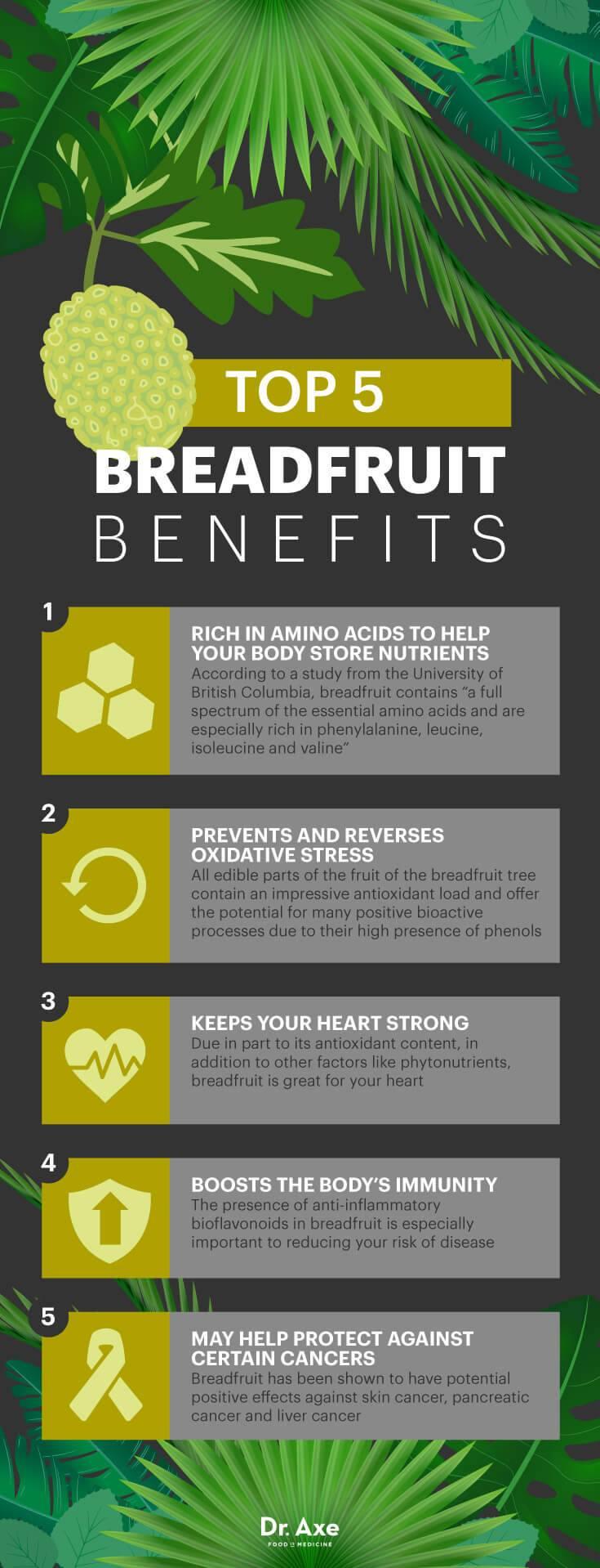 Breadfruit Benefits
