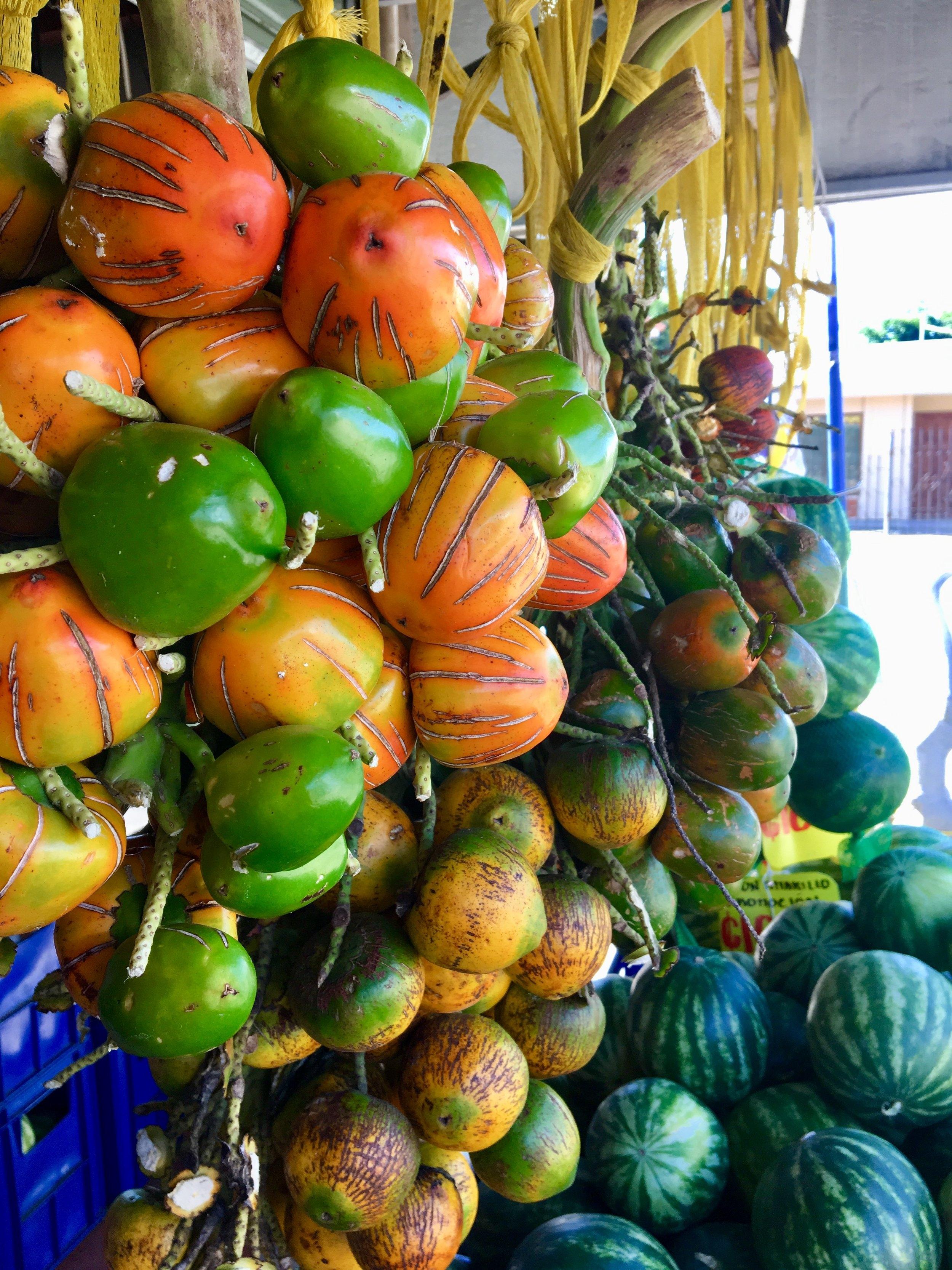 peach palm fruit.JPG