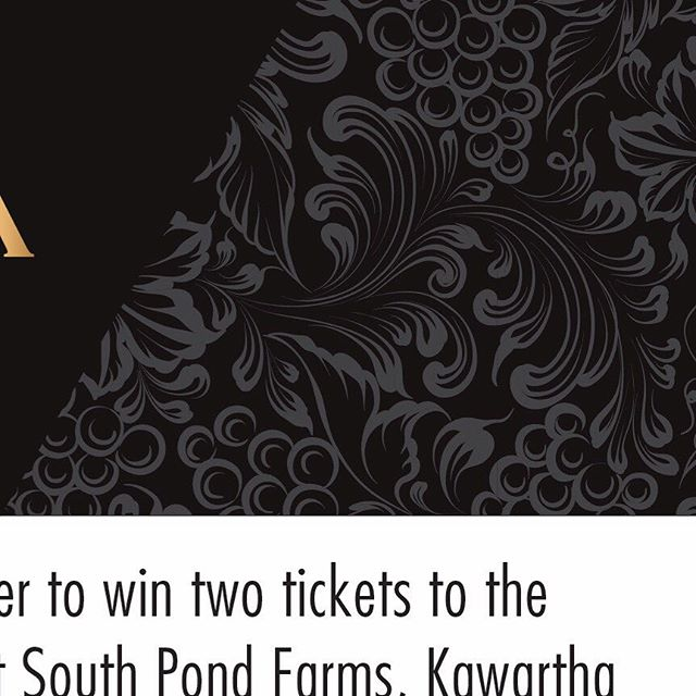 """3 of 6 (read all 6!) Open to speakers, media and sponsors, the Rural Retreat is billed as """"a way to reconnect with the people and places that make Ontario's food scene worth celebrating."""" This year's Retreat is at @SouthPondFarms in #TheKawarthas where chefs from over 18 #FeastOn Certified restaurants will come together to prepare a locally-inspired feast over fires in the vineyard (transportation not included in prize). (Swipe for an image from #RuralRetreat2018.)"""