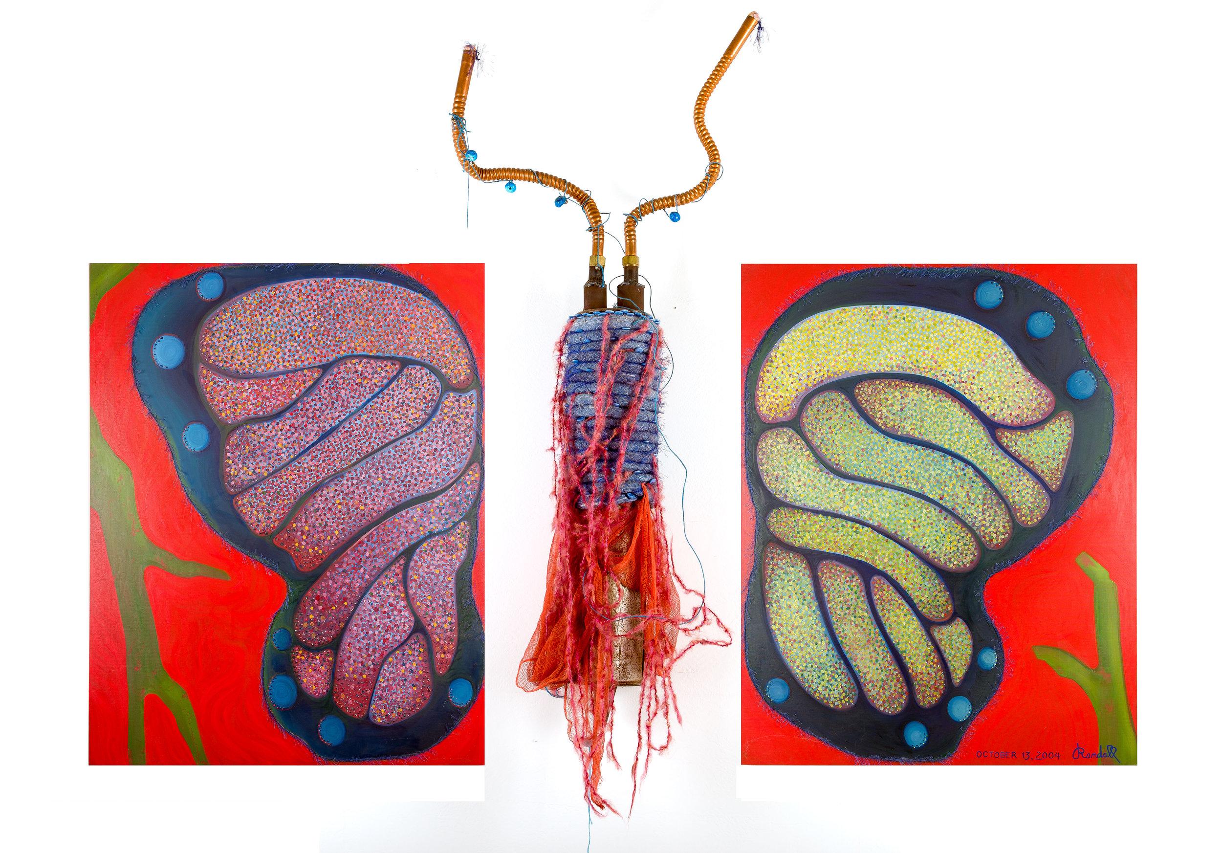 R01-00-Butterfly.jpg