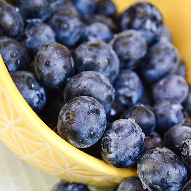 My favorite thing about summer is all the fresh blueberries we get to eat from our garden!! What's your favorite summer treat? ☀️