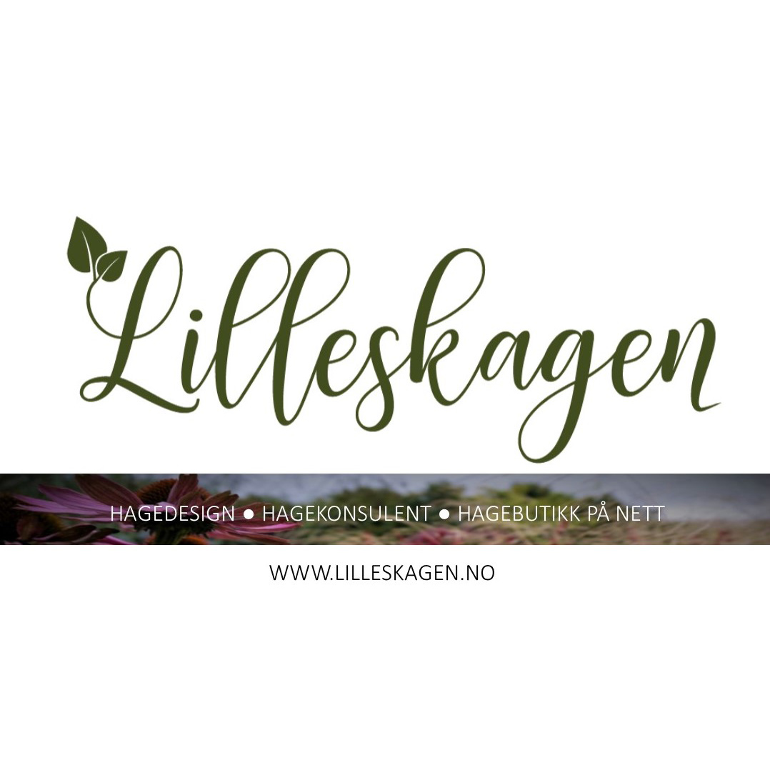 Lilleskagen-AS.jpg