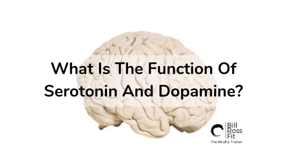 1 blog Serotonin And Dopamine.png