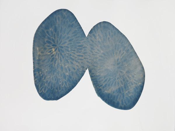 BLUE POOLS 5